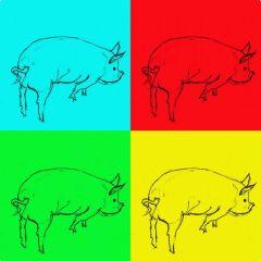 Edie Jolley - Halifax:  Pop Pigs