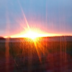 morning in the bus