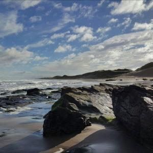 Joy Gravestock - The Sea